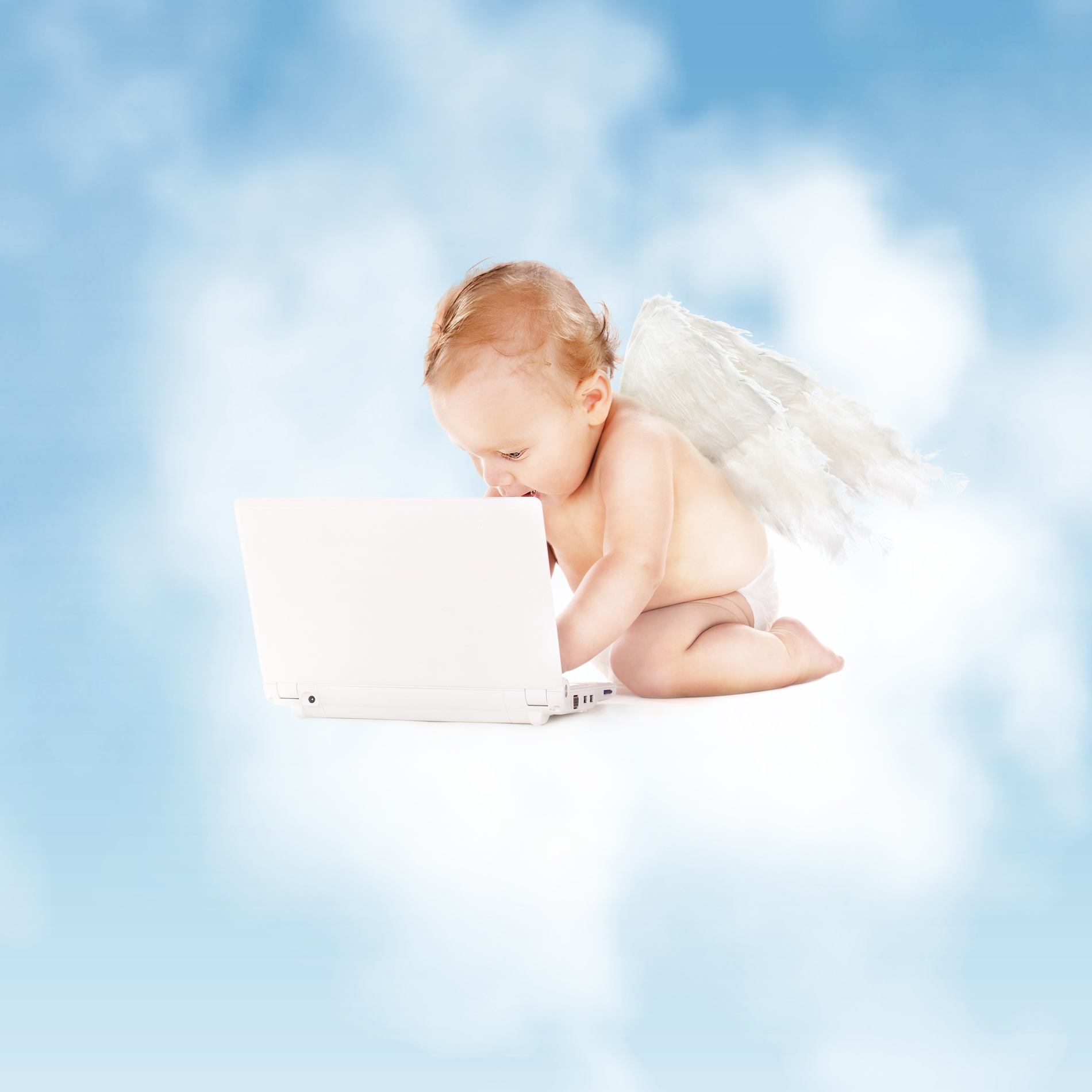 Baby Angel playing computer 53244