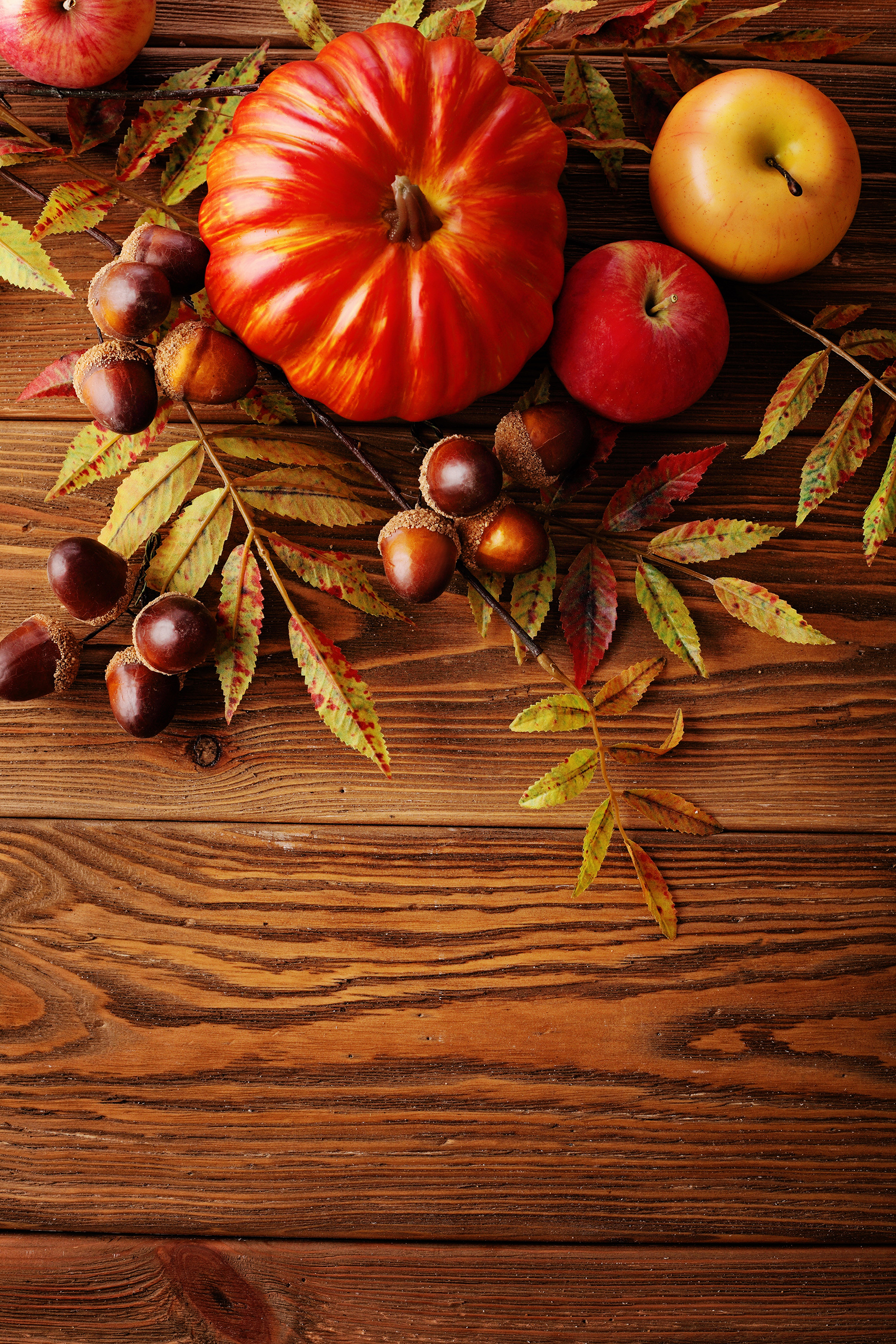 Pumpkins and apples on the Board 53746