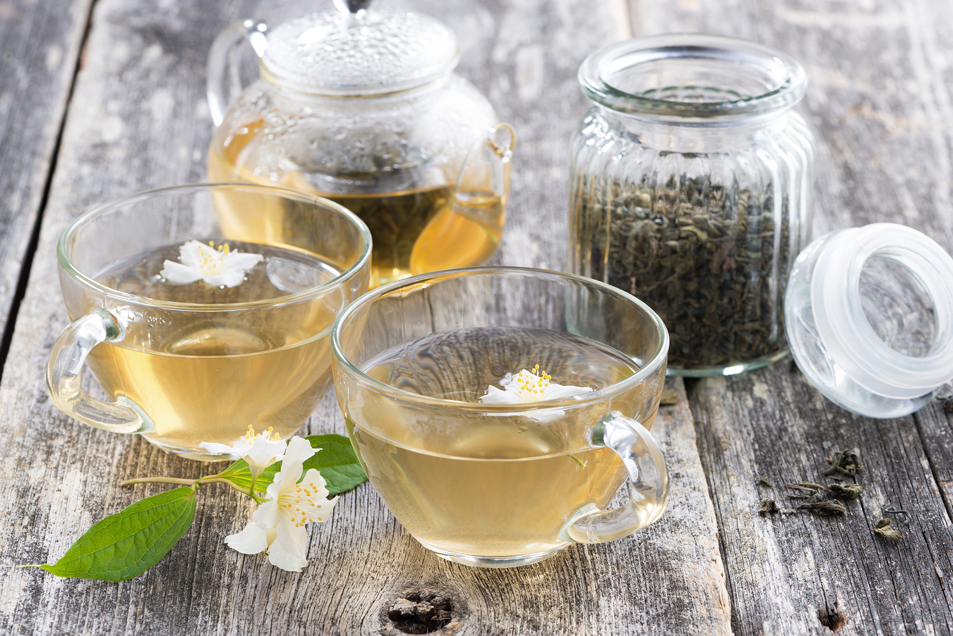 Small white flowers and BREW good tea 53900