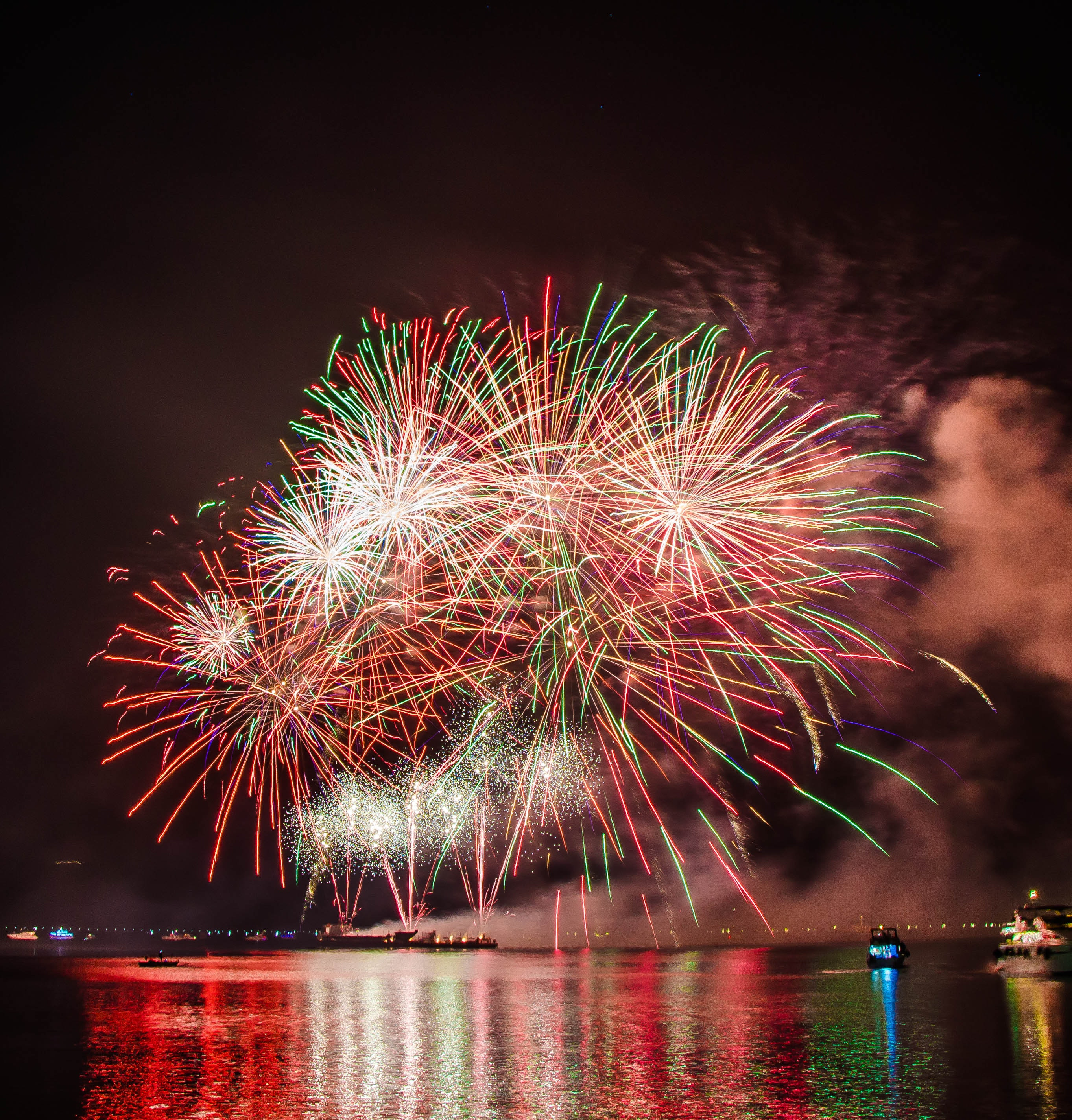 Blooming fireworks in the night sky  54250