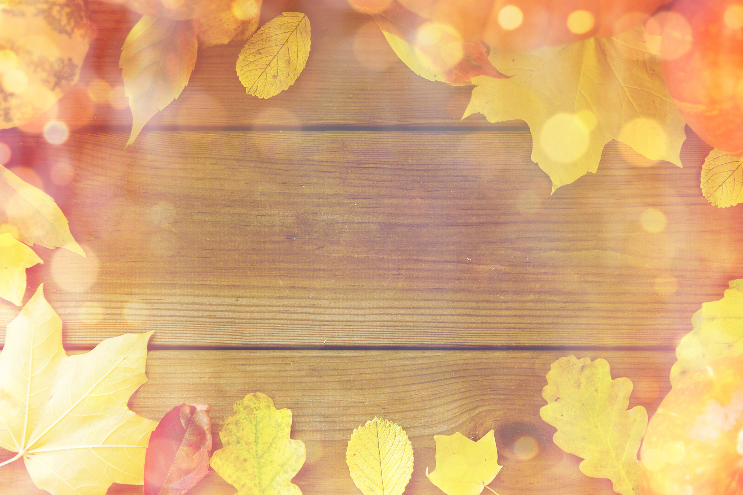 Autumn leaves border on wooden board 54527