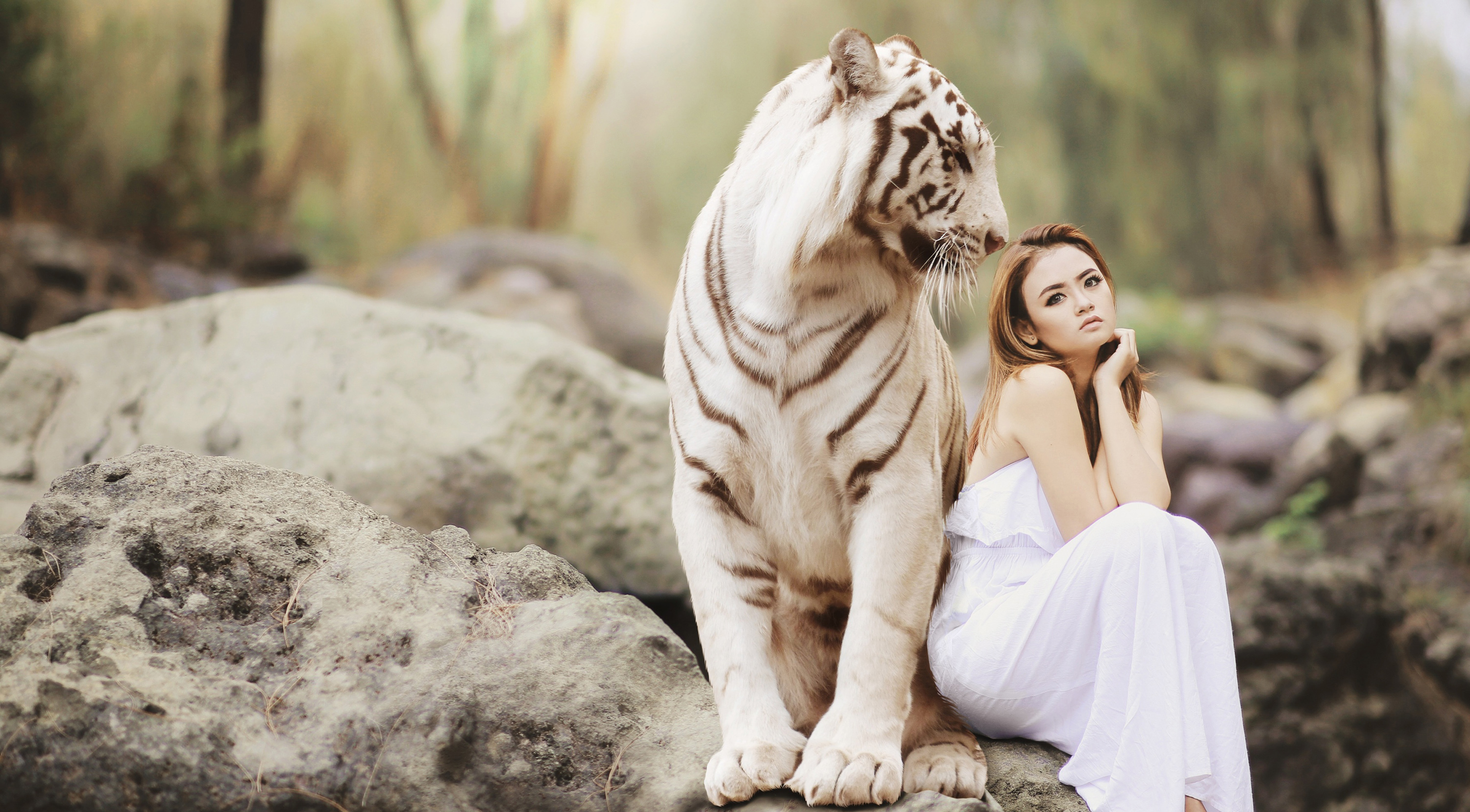 White Tiger and Female Beauty 54858