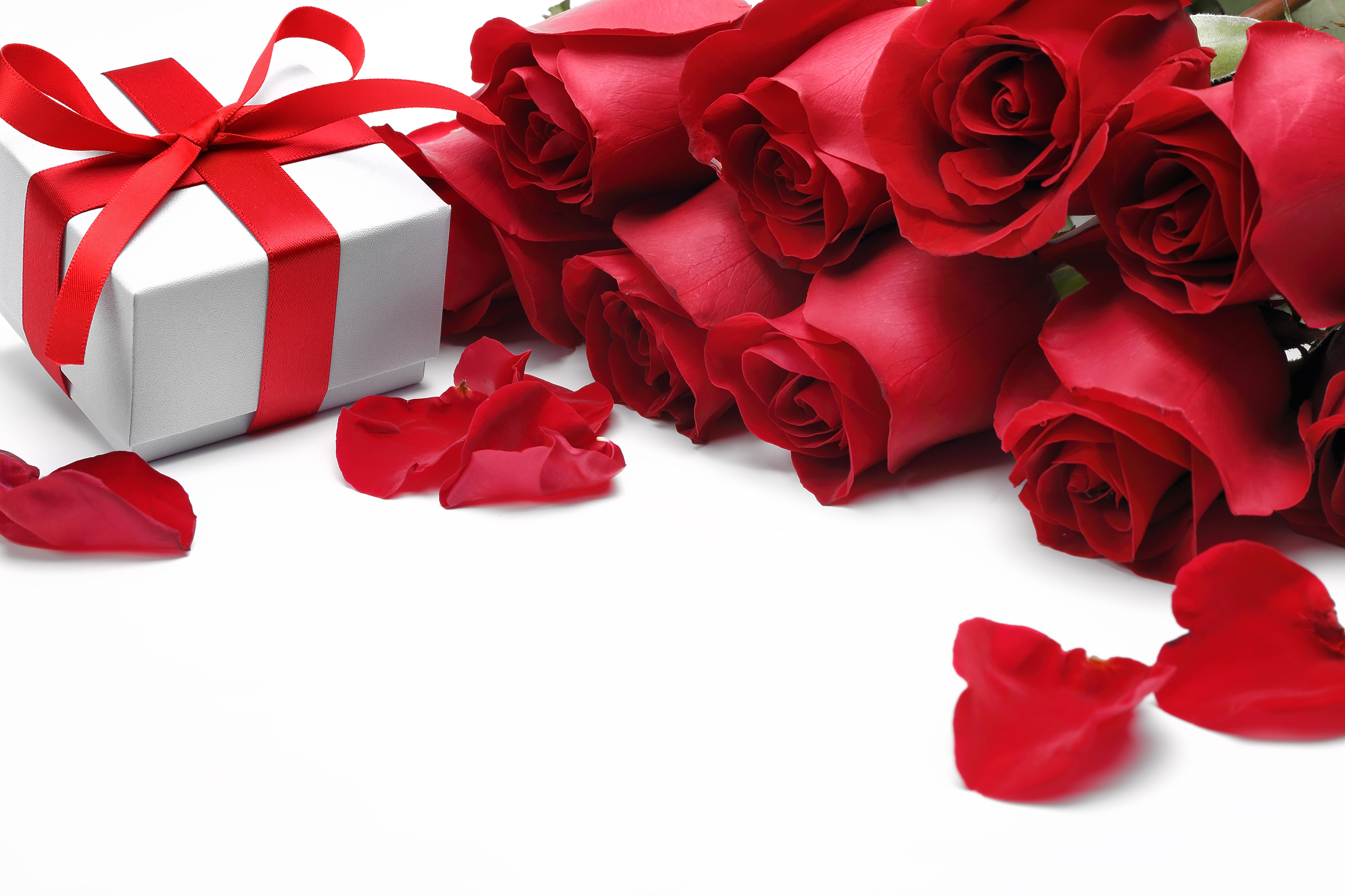 Rose flower and gift box 54893
