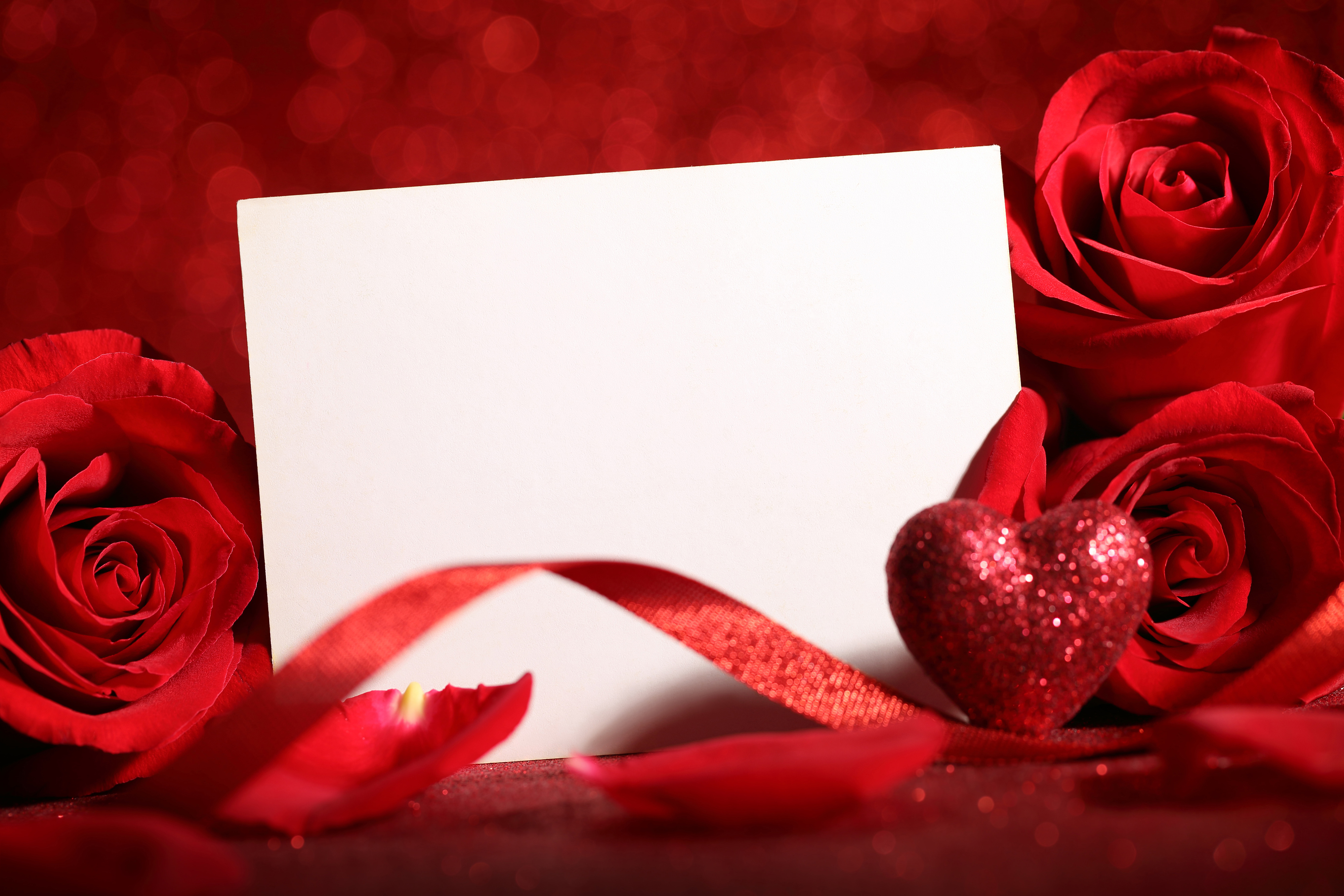 Red rose flower with blank card 54936