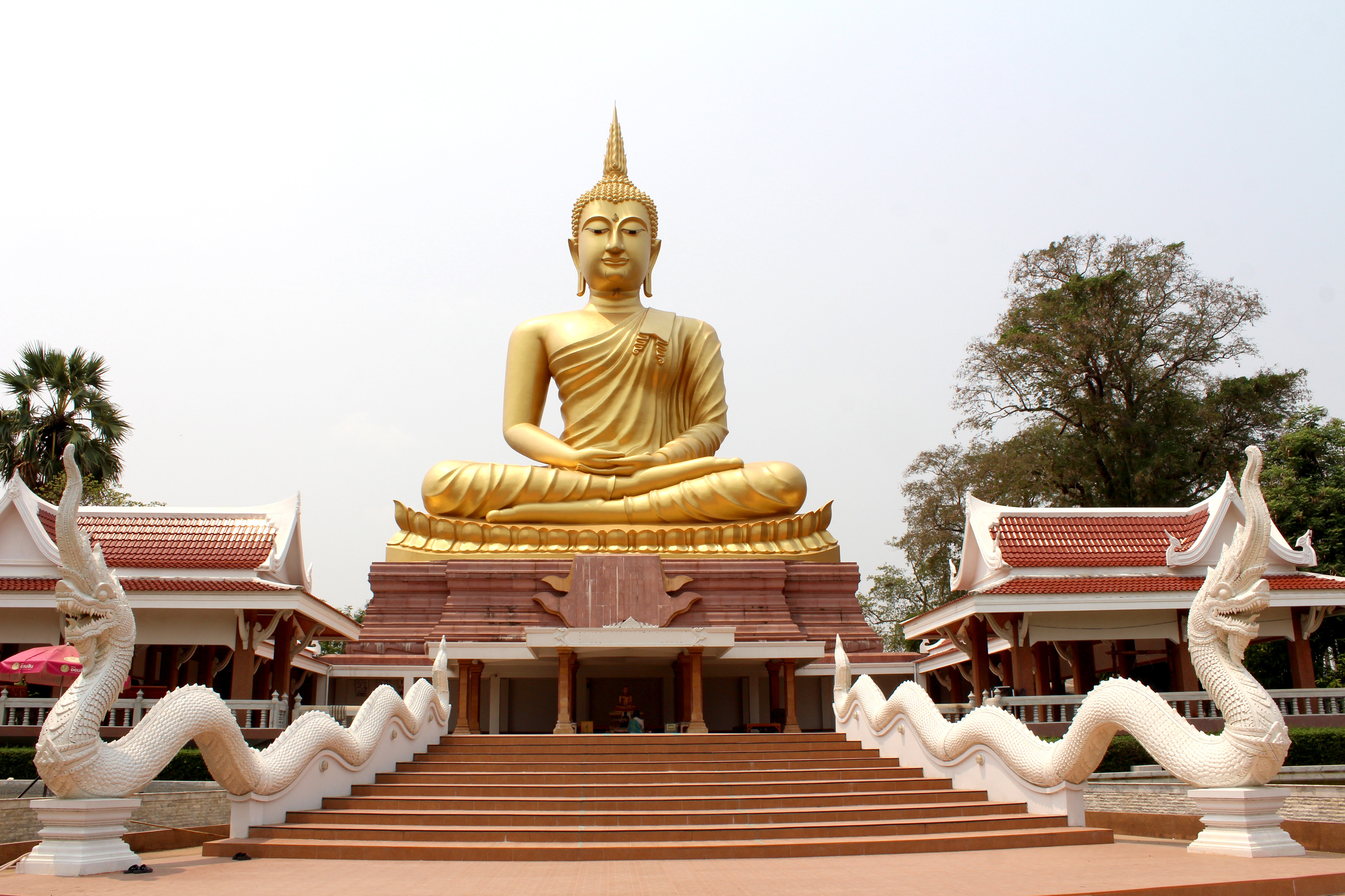 Golden Buddha and Temple 55069