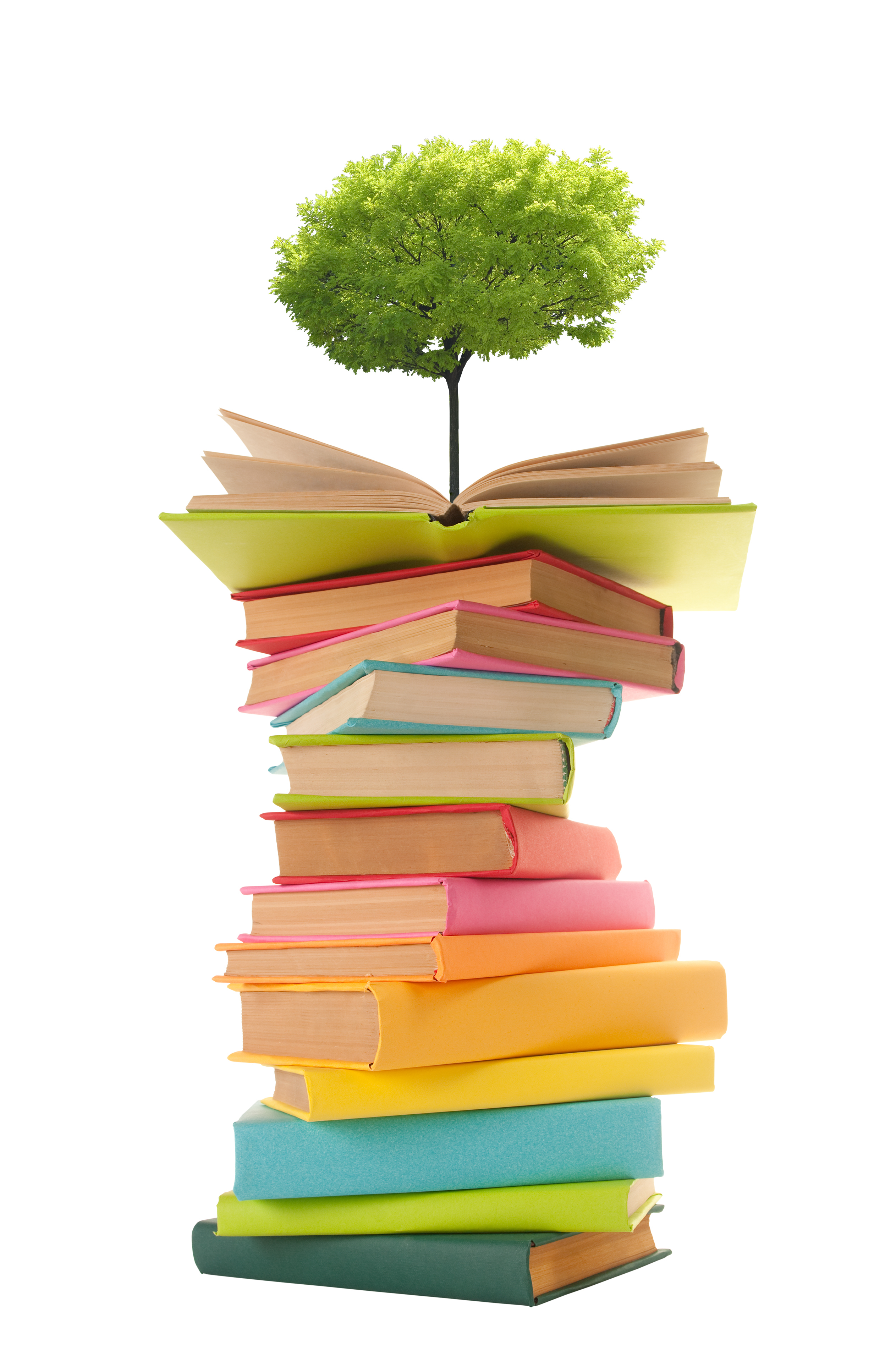 a tree growing on a stack of books 55090