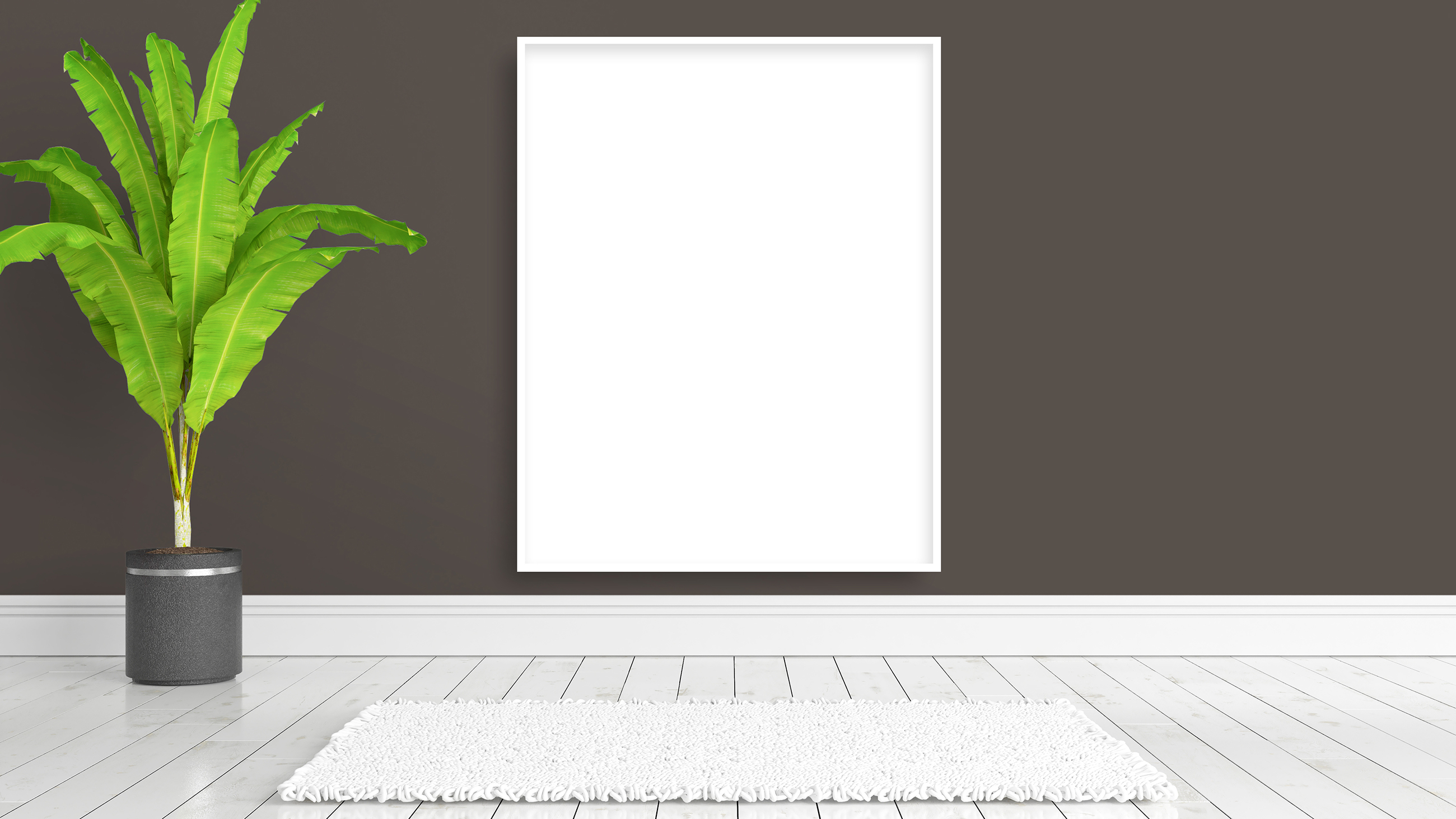 Green plant with blank picture frame 55336