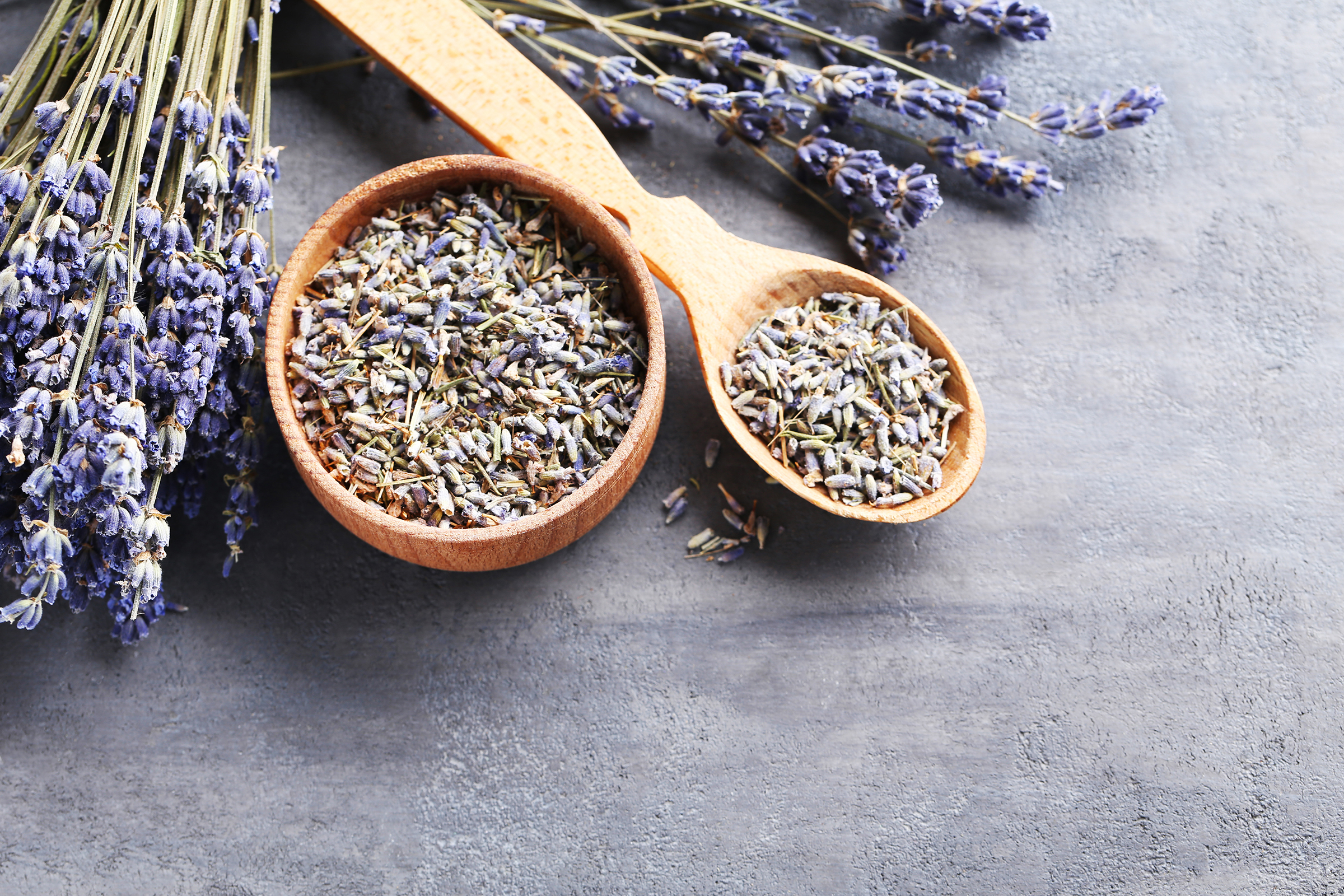 Lavender with seeds 55504