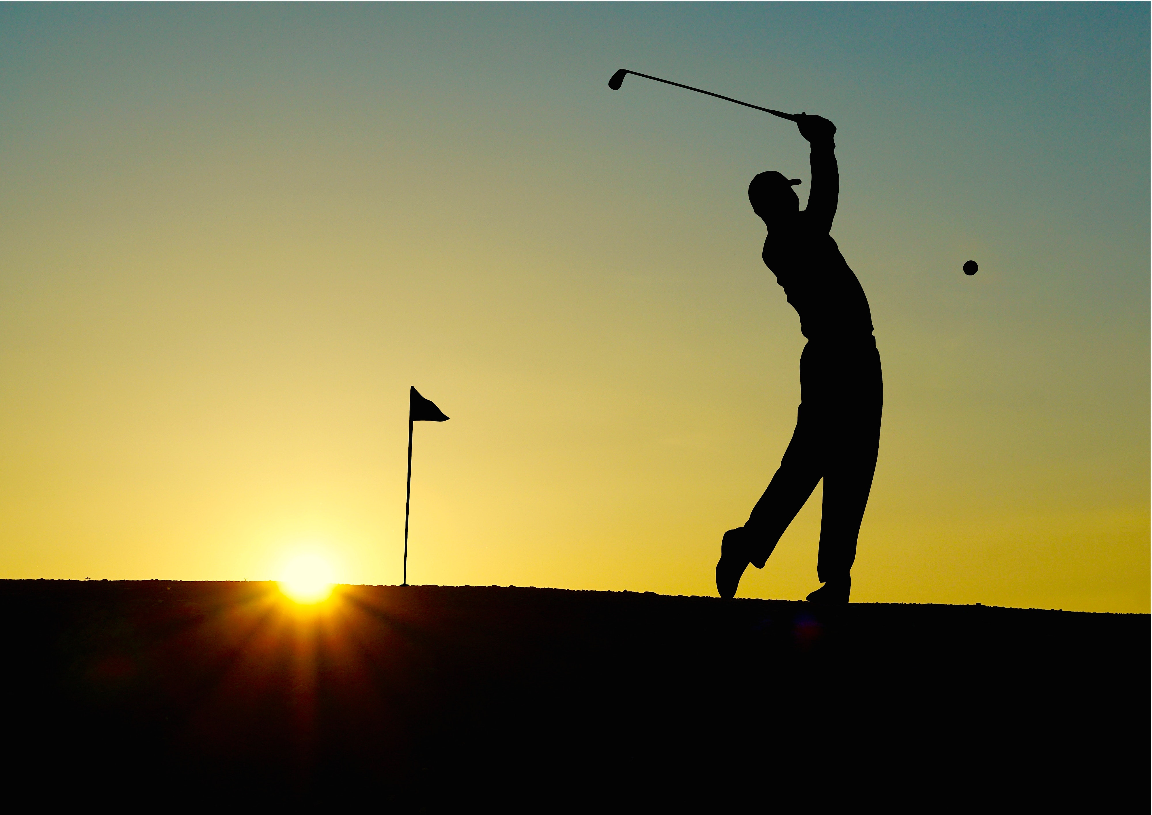 Golf character silhouette 56306