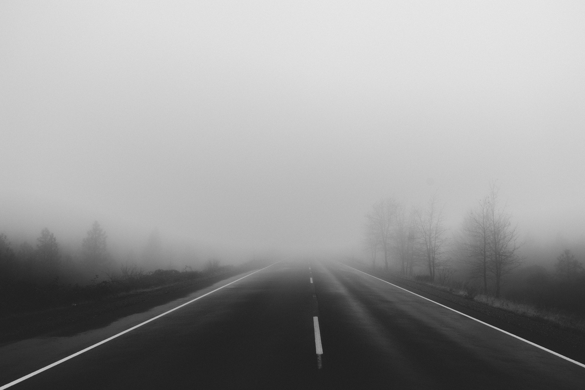 Thick foggy road 56307
