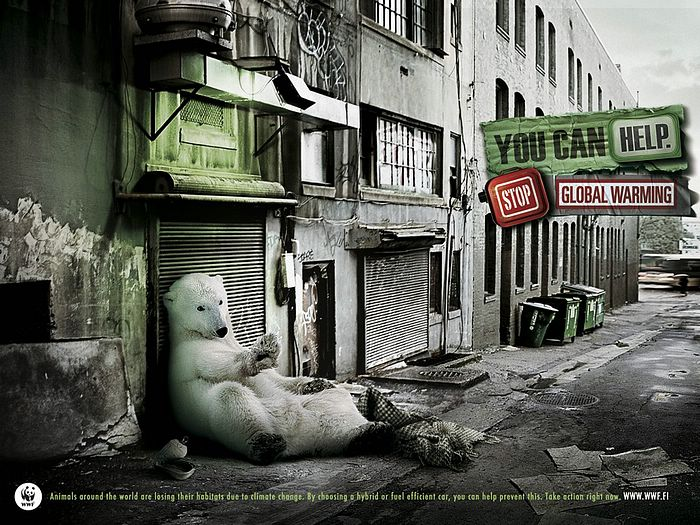 WWF World Wide Fund for Nature (WWF) PSAs wallpaper 31181