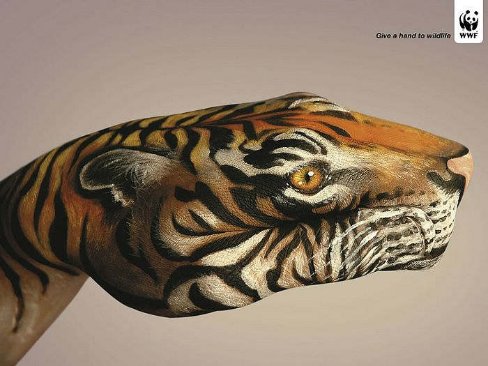WWF World Wide Fund for Nature (WWF) PSAs wallpaper 31271