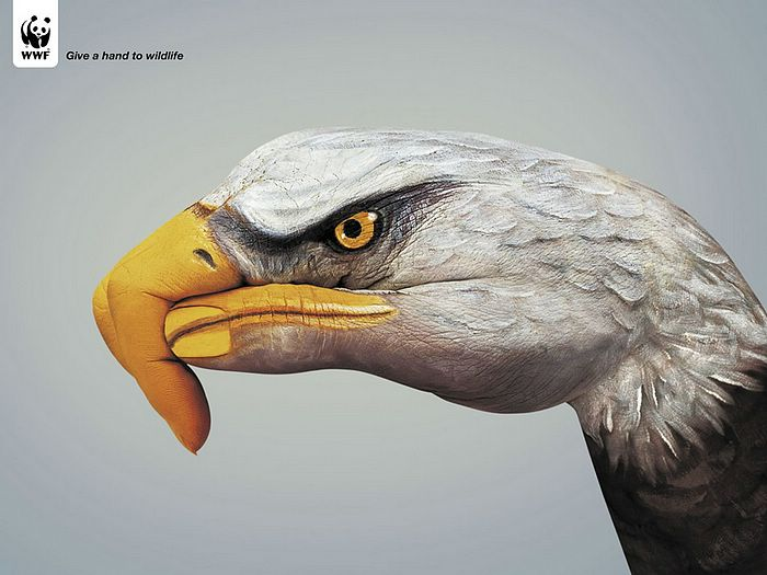 WWF World Wide Fund for Nature (WWF) PSAs wallpaper 31285