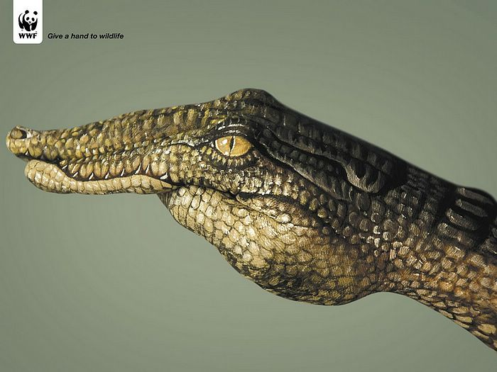 WWF World Wide Fund for Nature (WWF) PSAs wallpaper 31291