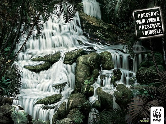 WWF World Wide Fund for Nature (WWF) PSAs wallpaper 31309