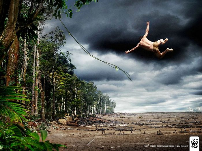 WWF World Wide Fund for Nature (WWF) PSAs wallpaper 31314