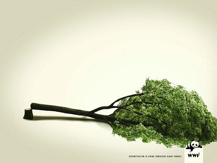 WWF World Wide Fund for Nature (WWF) PSAs wallpaper 31335