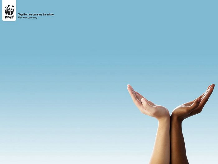 WWF World Wide Fund for Nature (WWF) PSAs wallpaper 31339