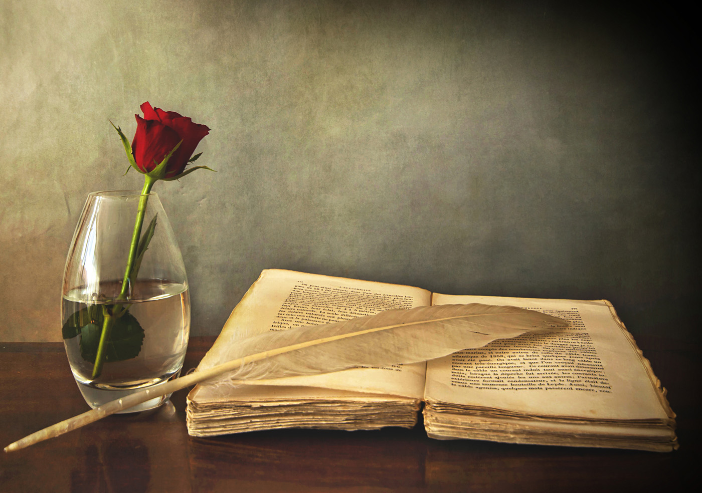 Old books and Roses 31480