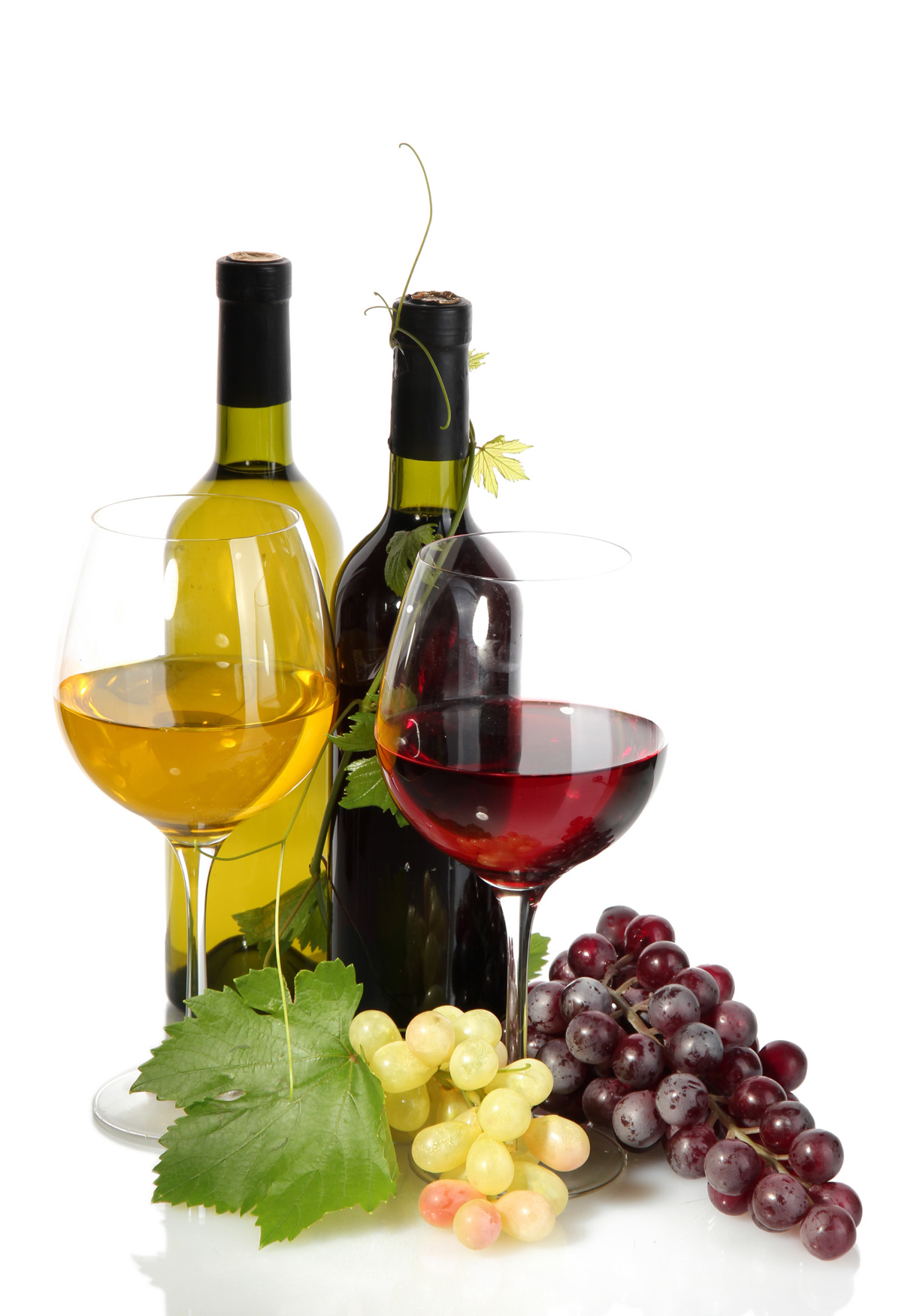 Wine and grapes 31497