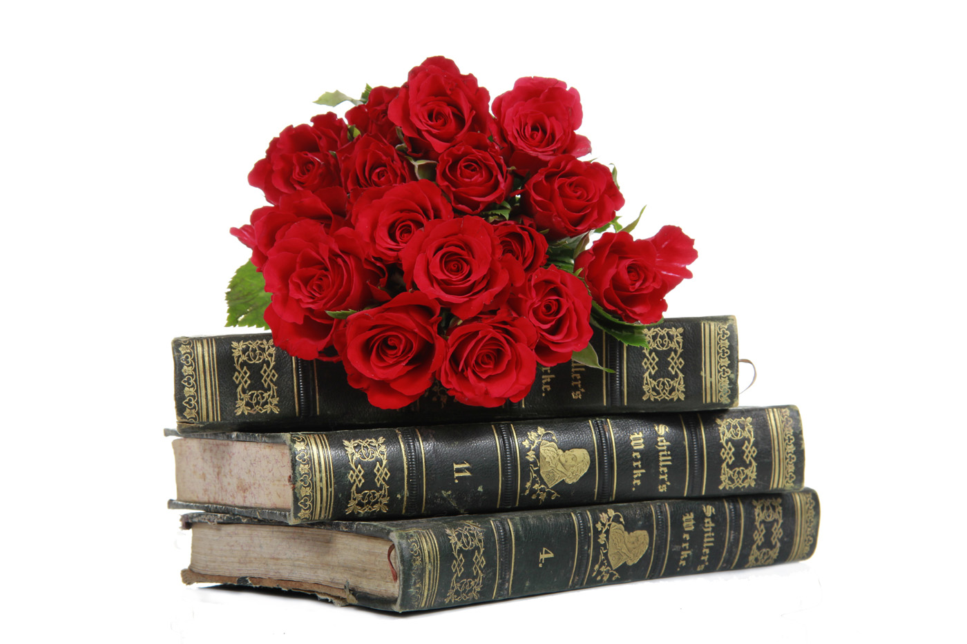 Old books and Roses 31528