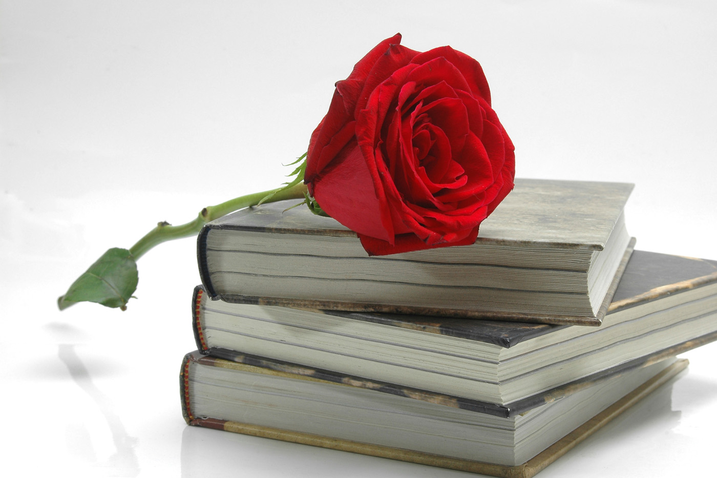 Old books and Roses 31569