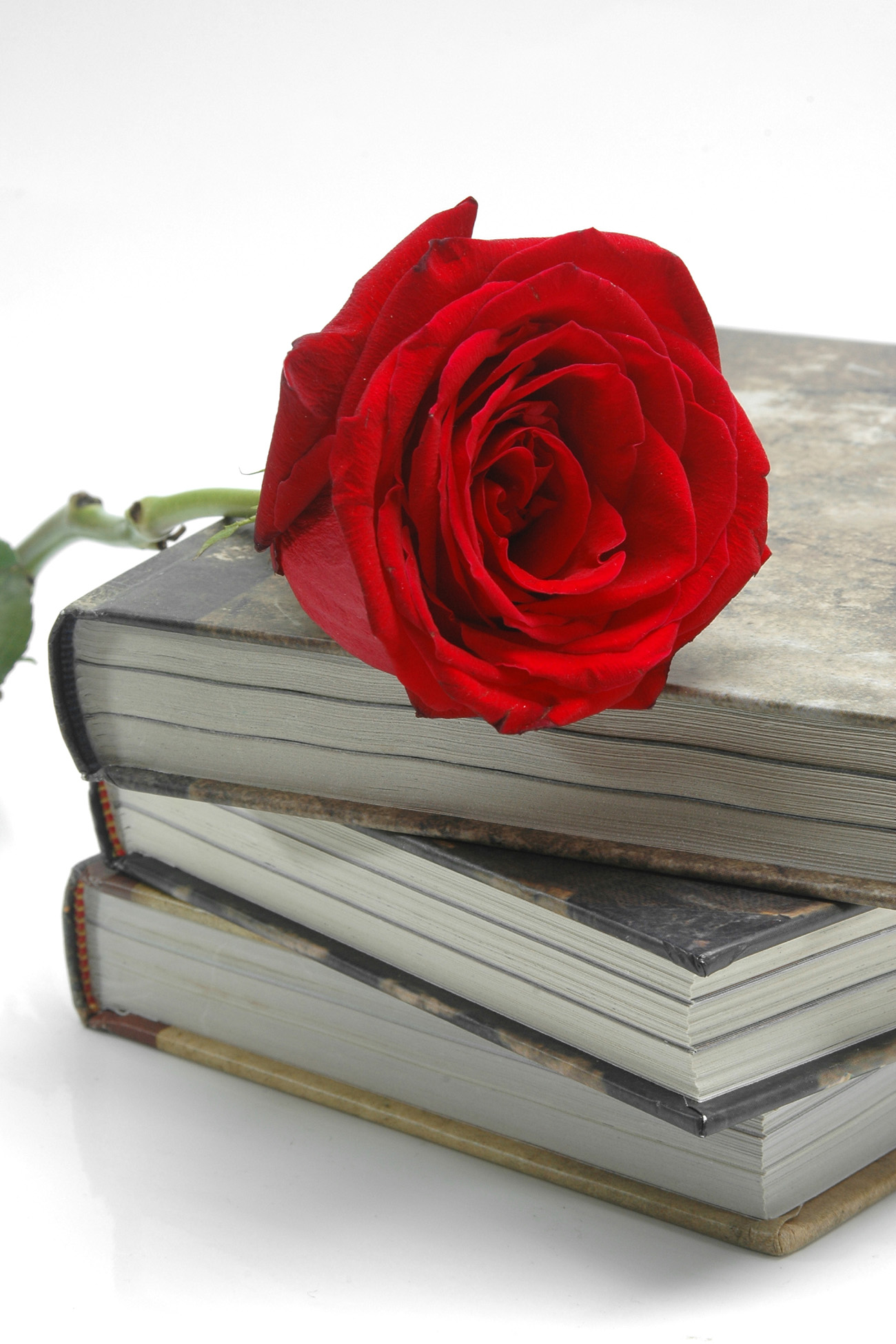 Old books and Roses 31636