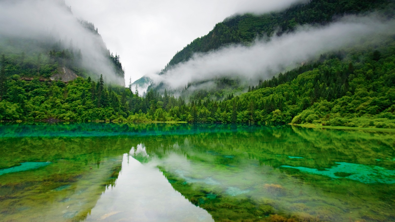 Jiuzhaigou colored sea in the morning mist 31665