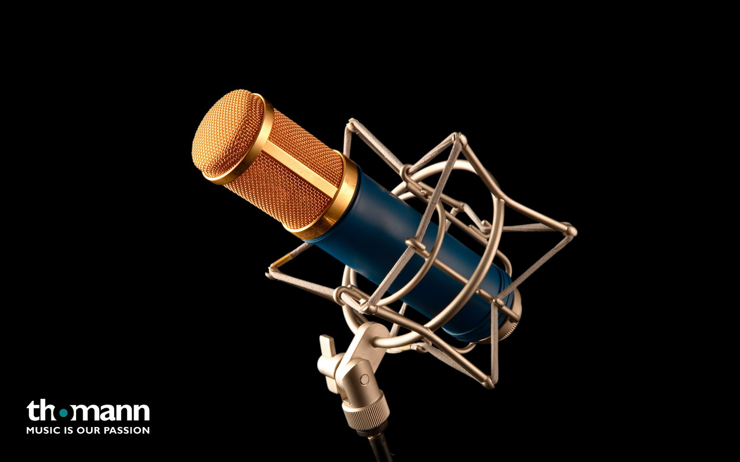 Microphone 31694