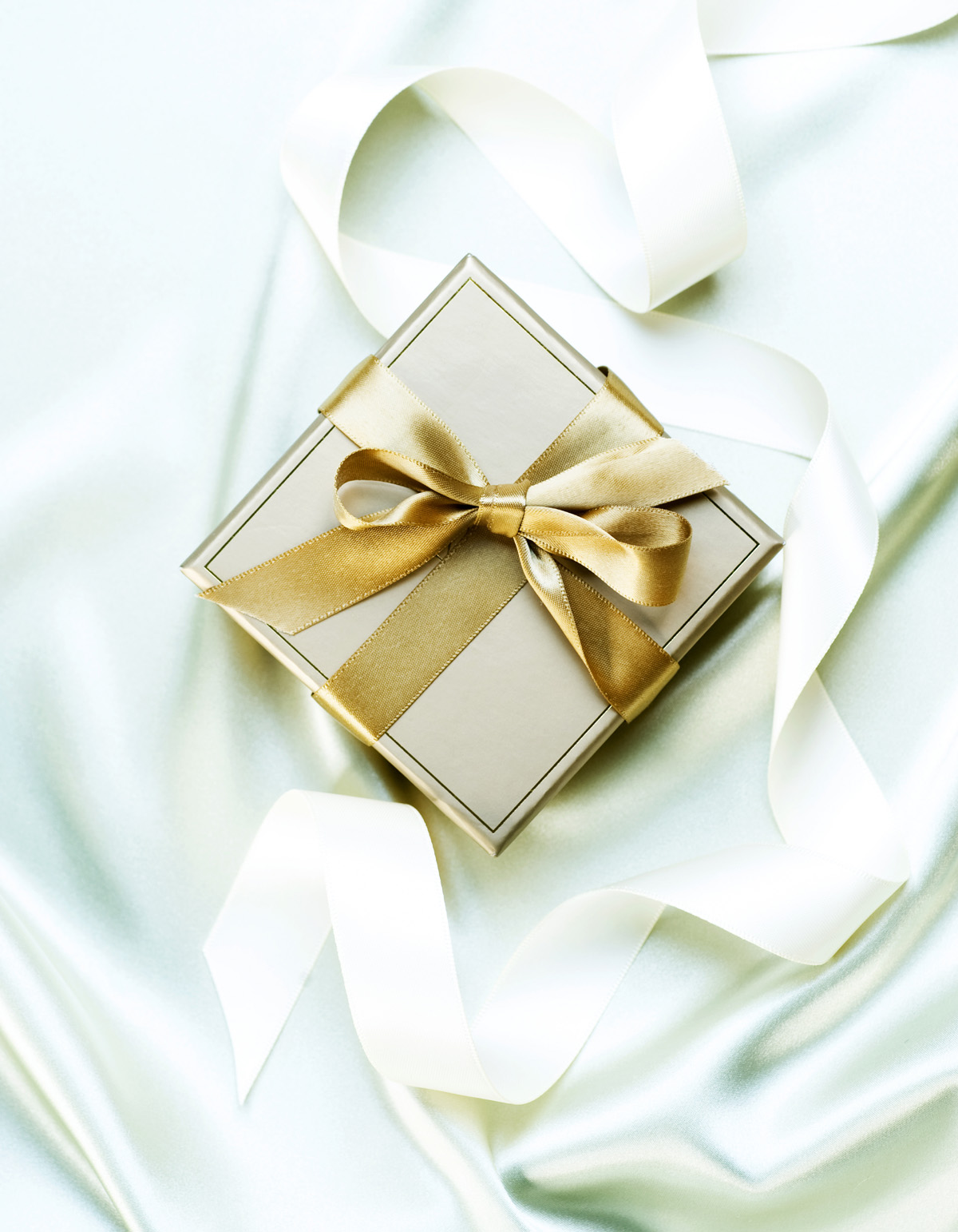 Ribbon Gift Box 31697