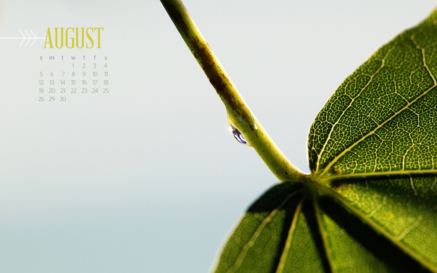 In January Calendar Wallpaper 31704