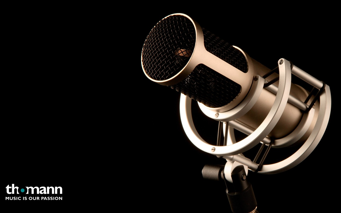 Microphone 31713