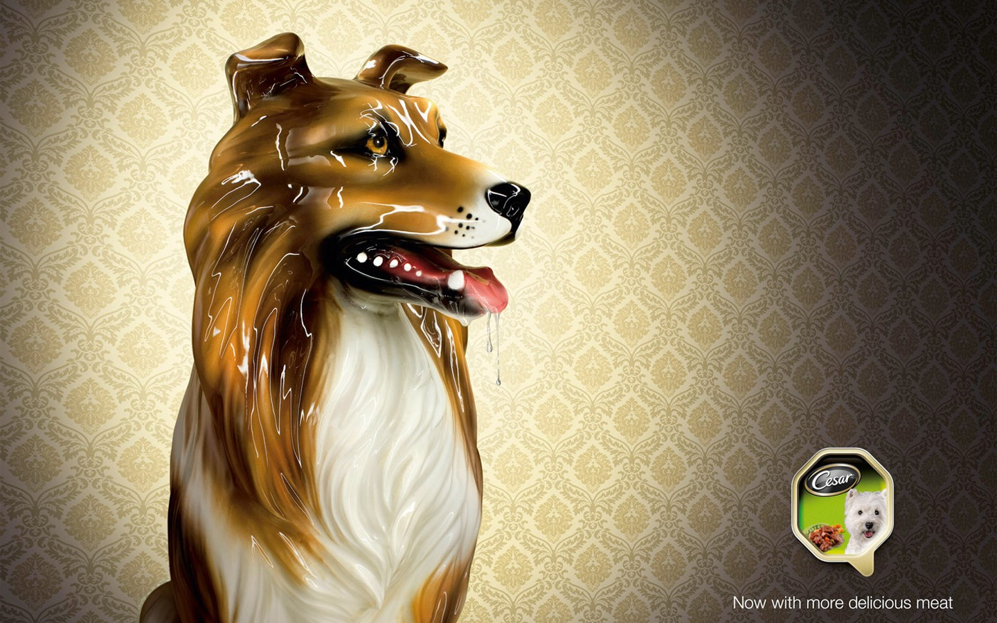 Pet Advertising Wallpapers 31757