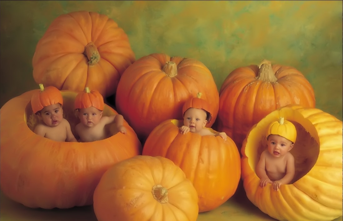 the giant pumpkins for baby 32322