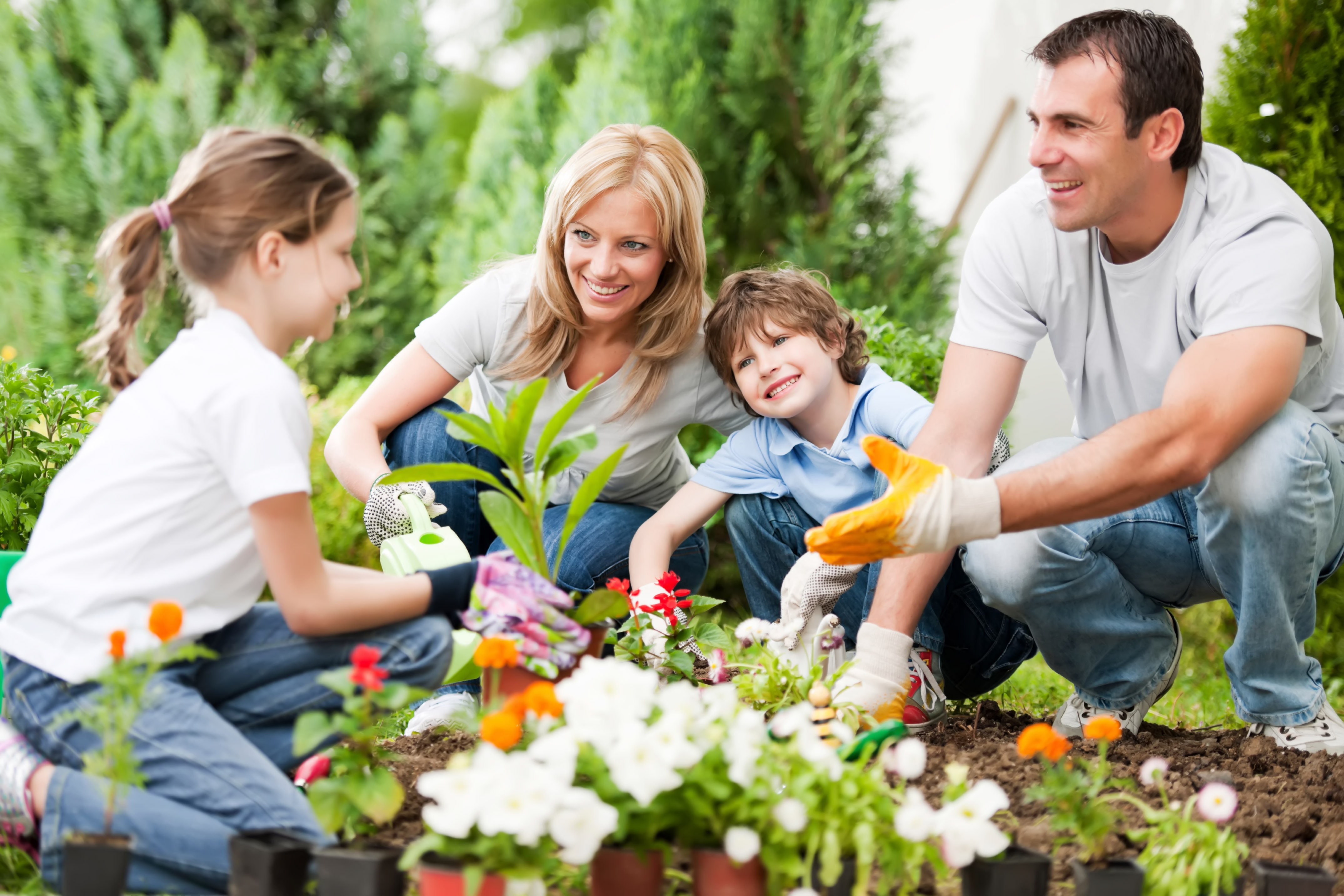 Portrait of a family gardening 32426