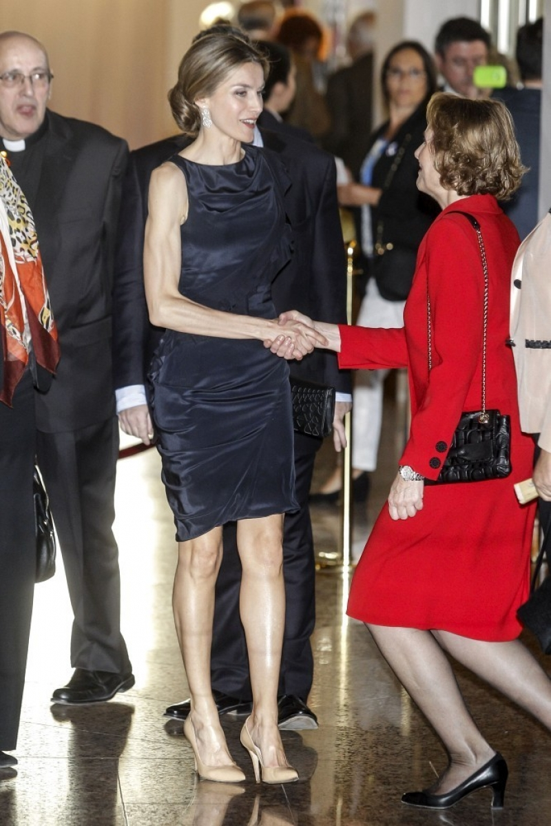Princess Letizia at the Luca de Tena Foundation Anniversary Concert 33441