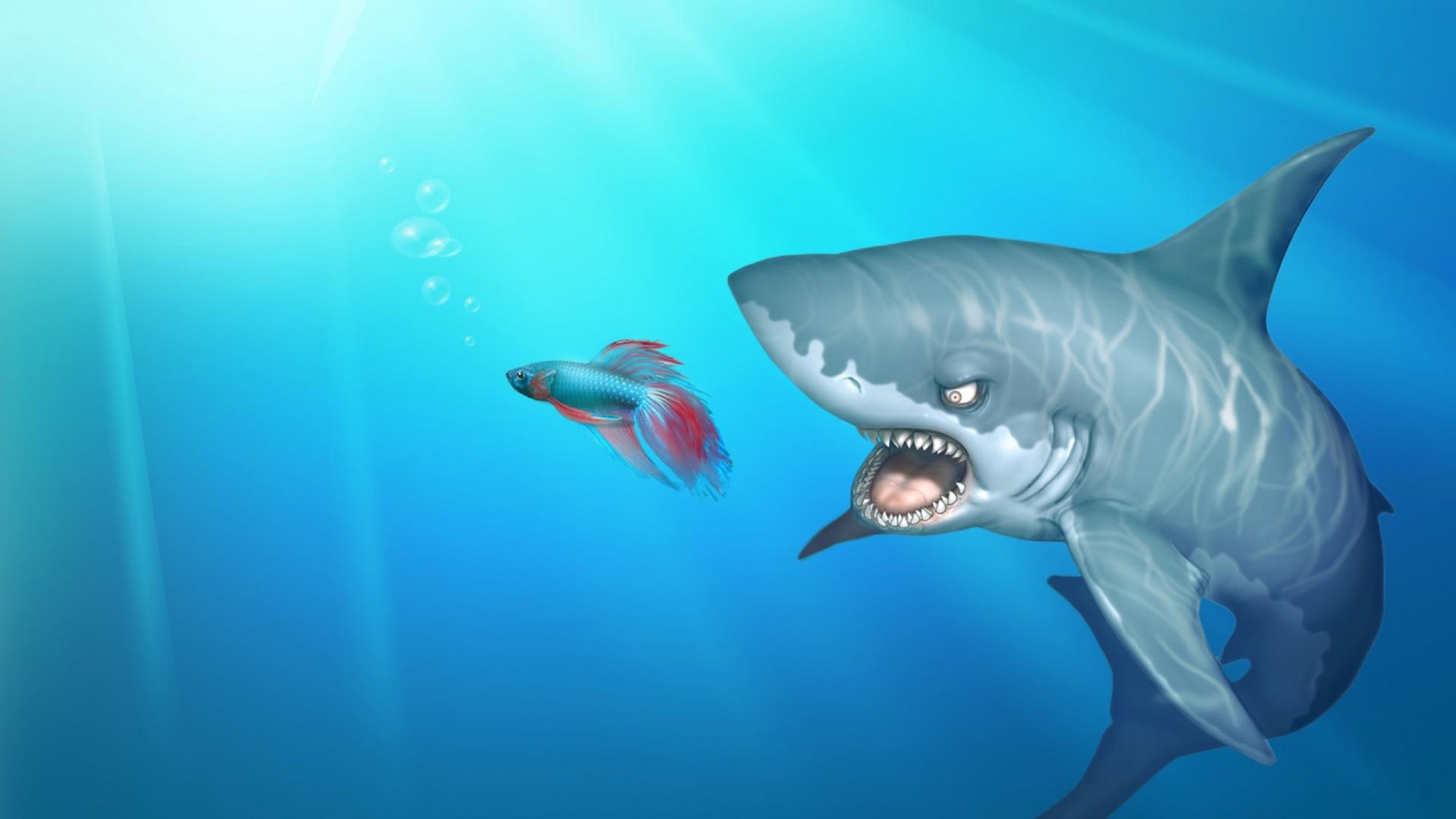 Cartoon Shark  Fish 33717