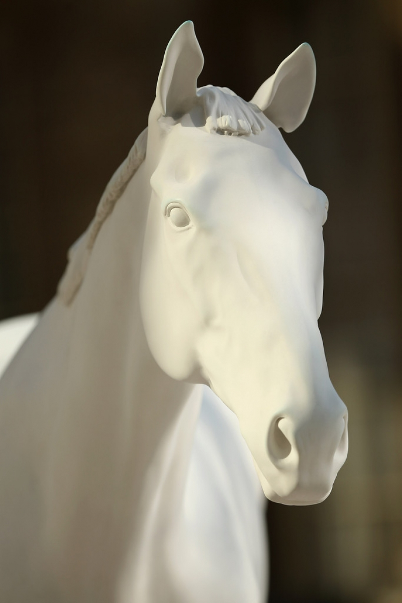 The British Council Unveils Artist Mark Wallinger's The White Horse Sculpture... 35150