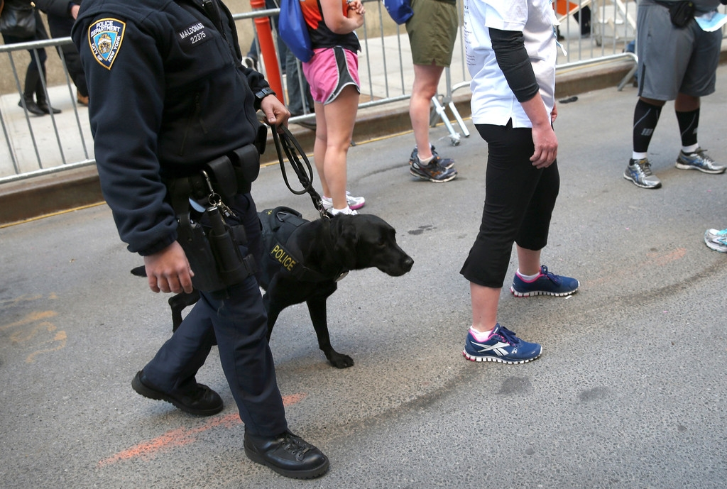 9/11 Memorial Memorial Run And Walk Held In New York Amid Increased Security ... 37122