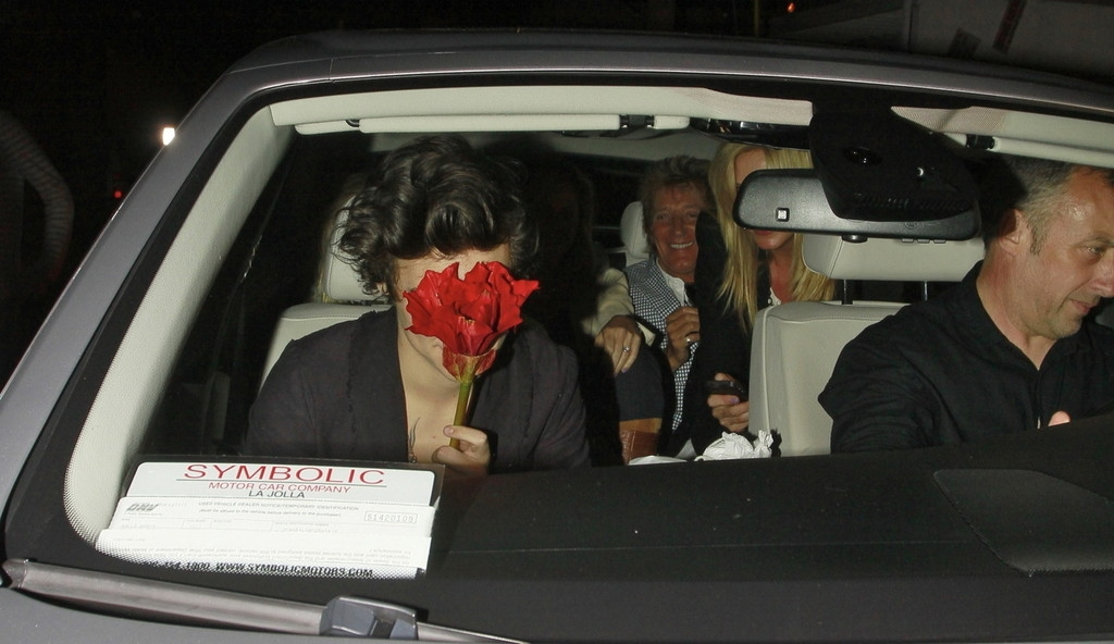 Harry Styles Out Partying With Friends 40707