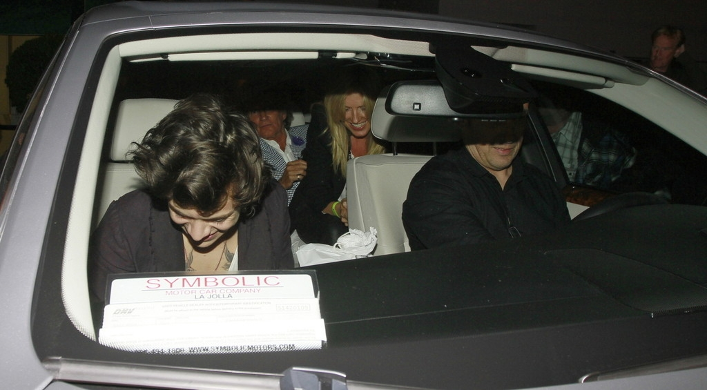 Harry Styles Out Partying With Friends 40734