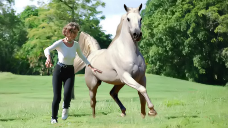 "Prancercise Creator Joanna Rohrback: ""I'm Against Riding a Horse ... Let the Horse Enjoy Its Free Will"" 44292"