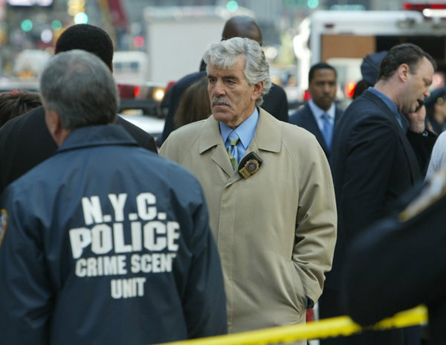 Dennis Farina, Detective in Life and TV, Dies at 69 45351