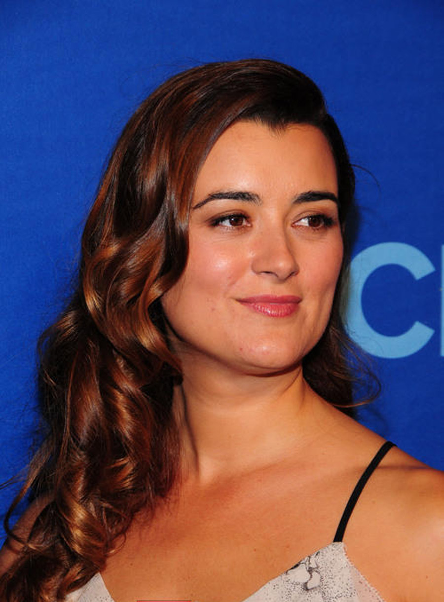 Cote de Pablo Still Leaving NCIS Despite Being Offered 'A Lot of Money'? 45583