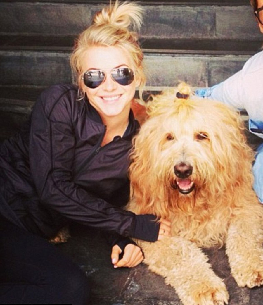 You mutt need to get a new look! Julianne Hough and her friend's dog sport matching blonde top knots 46636