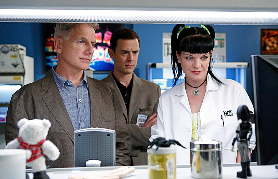 In the Future, All Cities Will Have Their Own 'NCIS' Franchise 46708