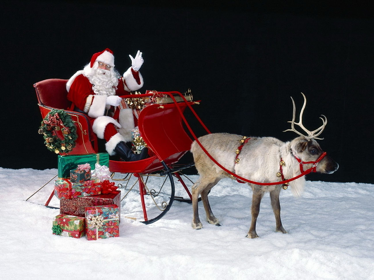Santa Claus and reindeer 48595