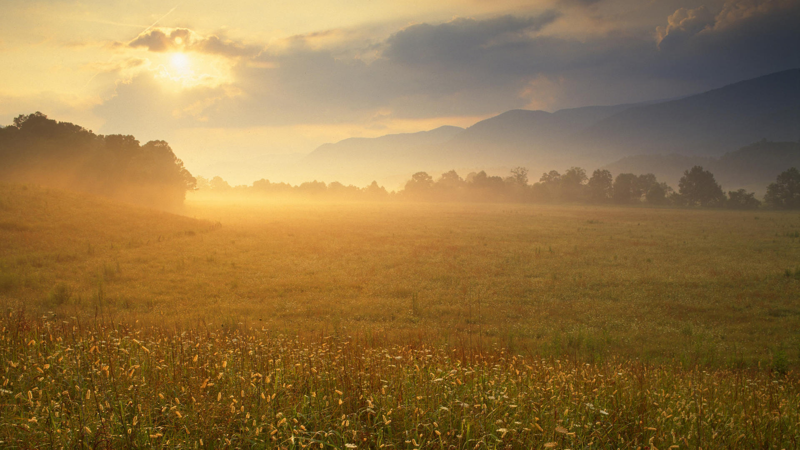 Natural scenery Wallpaper Download 49391