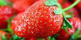 Strawberry close-up high-definition 7352
