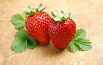 High-definition material Strawberry 1505
